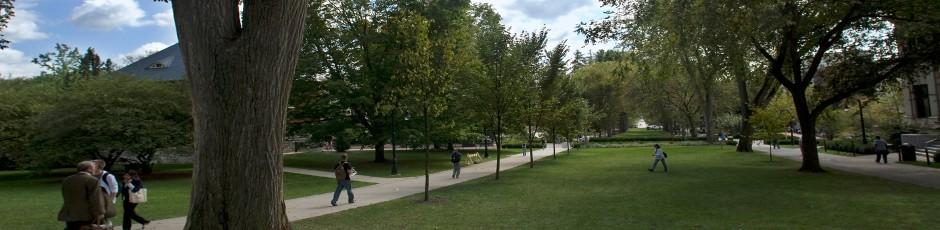 Penn State Elms FAQ Alumni Separate Accreditation Header Banner